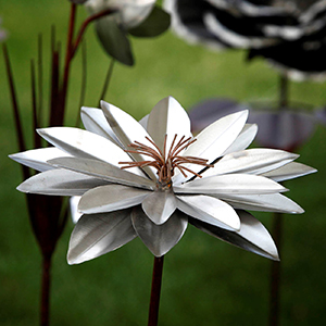 Artwork consisting of a water lily