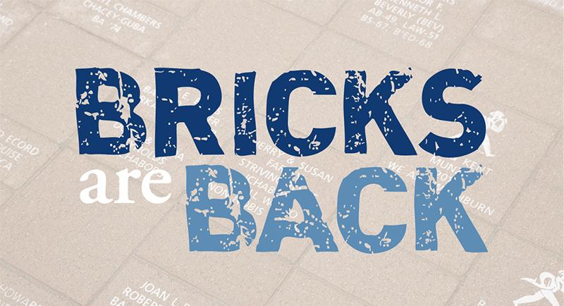 Bricks are back!