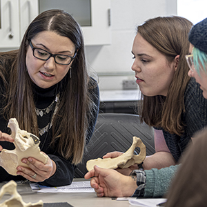 Students in Alexandra Klales' Forensic Anthropology class